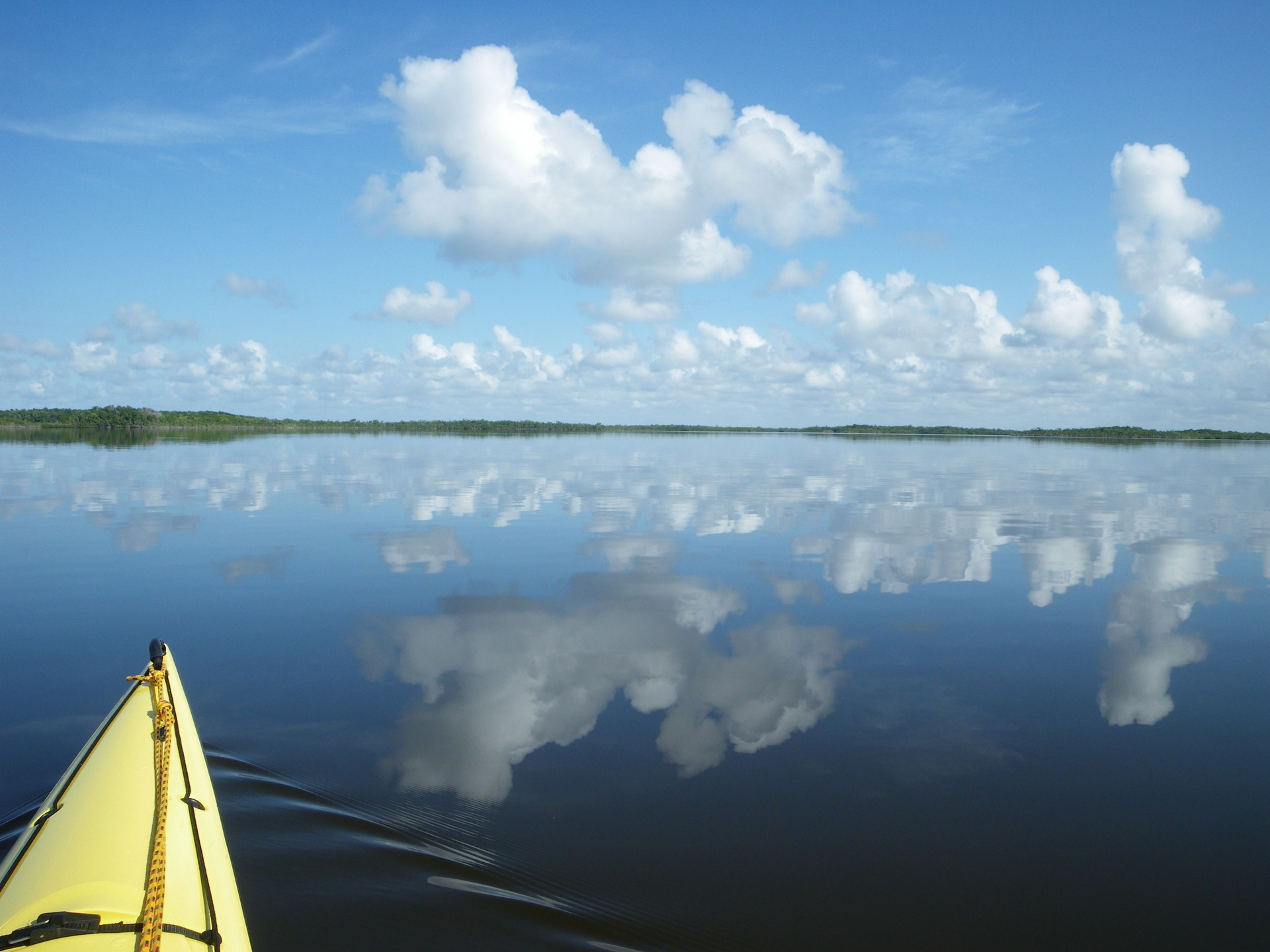 Everglades - reflections of clouds